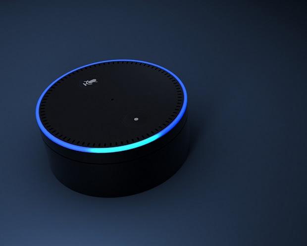 Trendsetter GrubHub: Bestellung über Alexa - Lieferung im Live-Stream
