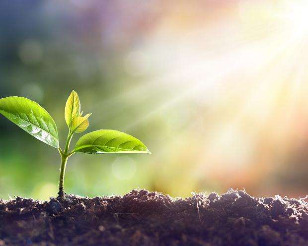 DAX Analyse zum 14. Februar 2018: Bodenbildung?