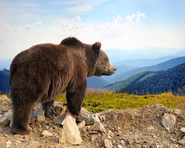 DAX Analyse zum 29. August 2018: Bewegungslosigkeit als Gelegenheit der Bären?