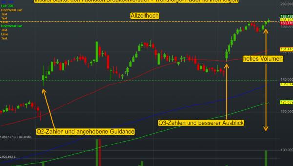 Insulet Corp (0,06%)