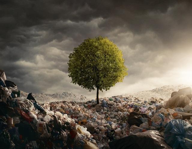 Die Top-10-Klimaschutz-Aktien: Der Hype nimmt an Fahrt auf!
