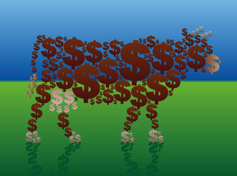 Die große Cash-Cow Alphabet