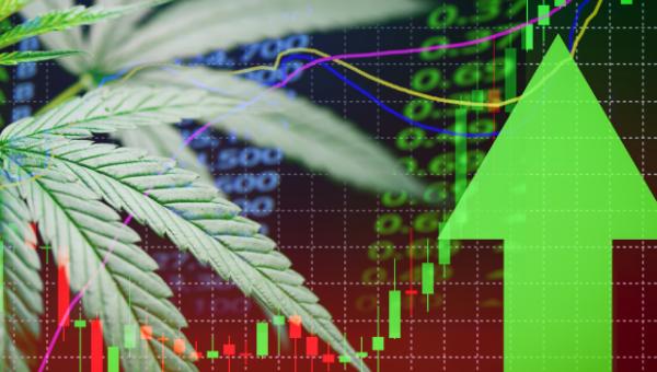"""Was ist aus den """"Highs"""" der Cannabis-Branche geworden? Sehen wir den Turnaround bei Aurora Cannabis und der gesamten der Cannabis-Branche?"""