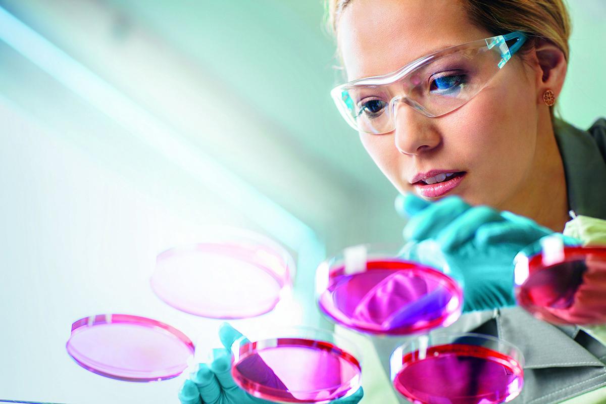 Bayer – Trotz Glyphosat-Rechtsstreitigkeiten sehen Analysten bis zu 75 % Kurspotenzial für den DAX-Konzern – hat man auch nicht alle Tage so viel Kurspotenzial für einen Titel aus dem deutschen Leitindex
