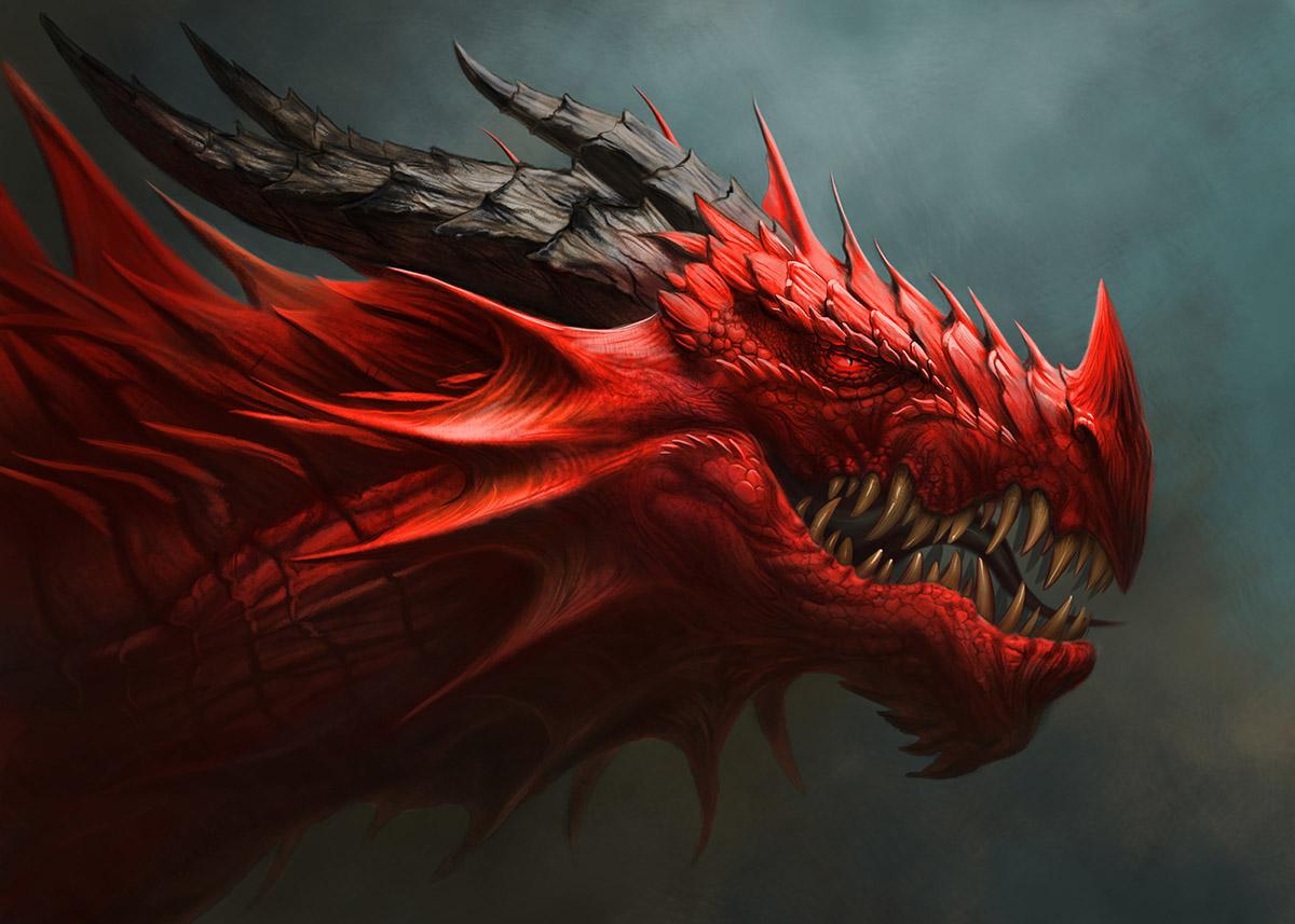 Trader Race Sommer 2020 von TraderFox: Man lernt nie aus – Interview mit Dragon Attack