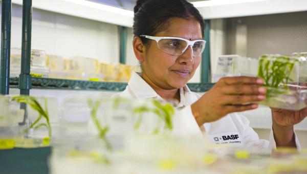 BASF – Focus-Money sieht für langfristig orientierte Anleger eine starke Einstiegschance beim Chemie- und Agrarkonzern und wittert ein Kurspotenzial von knapp 30 %