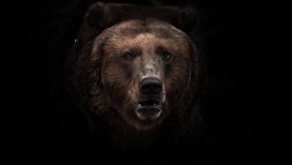 Zweite Corona-Crash-Welle am Aktienmarkt: Das ist unsere Strategie!