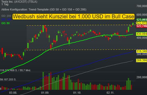 Aufnahme in den S&P 500 und Verdopplungspotenzial? - Tesla mit überzeugender Wachstumsstory