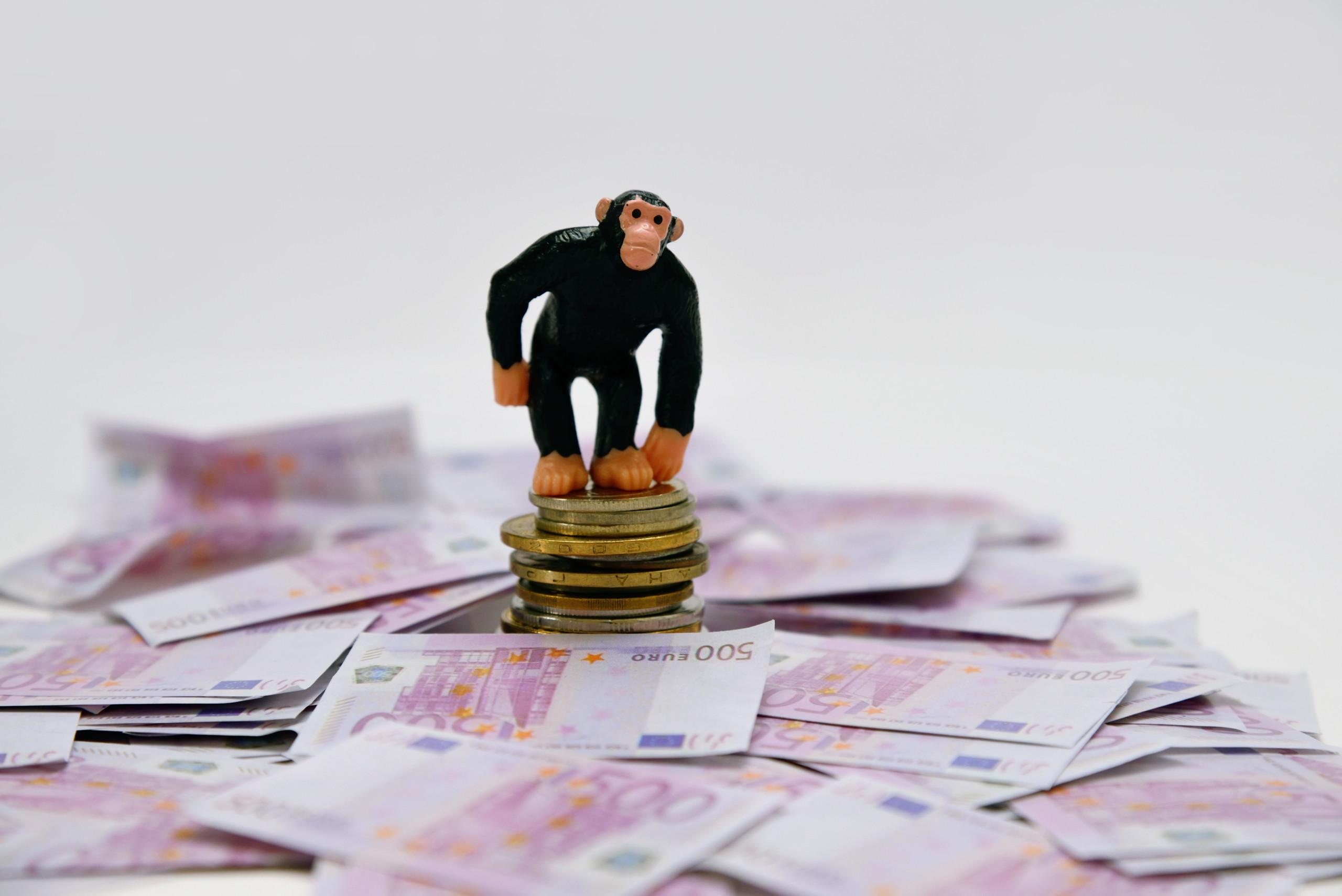Warum sich Qualitätsaktien (nicht immer) auszahlen, Größe bei Aktien (doch) nicht alles ist und die Zeiten für Affen an den Börsen schlecht sind