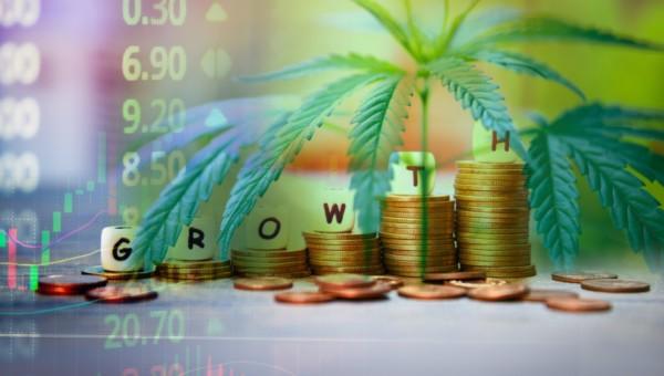 Empire Cannabis Summit 2021 - Vier wesentliche Katalysatoren der Cannabisbranche und ein paar Hidden Champions