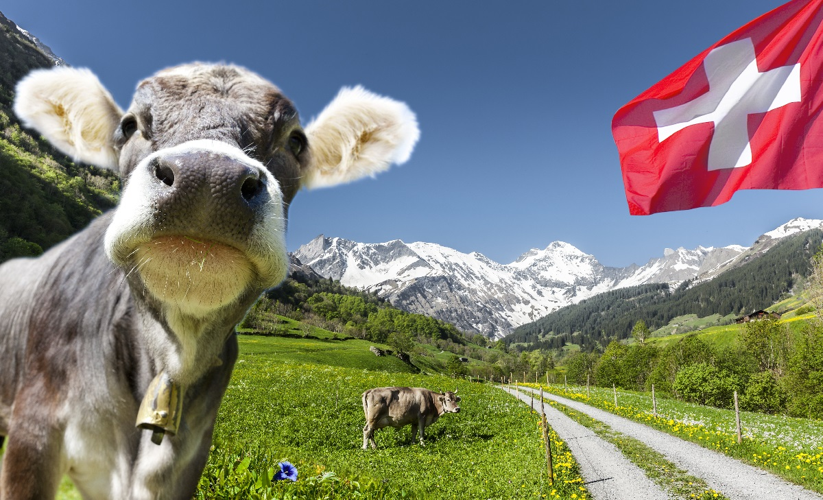 Aktien aus der Schweiz: Defensiv, aber trotzdem besser als US-Aktien - und zwar letztlich schon seit 1970
